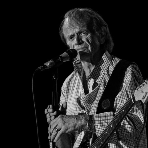 Al Jardine on stage