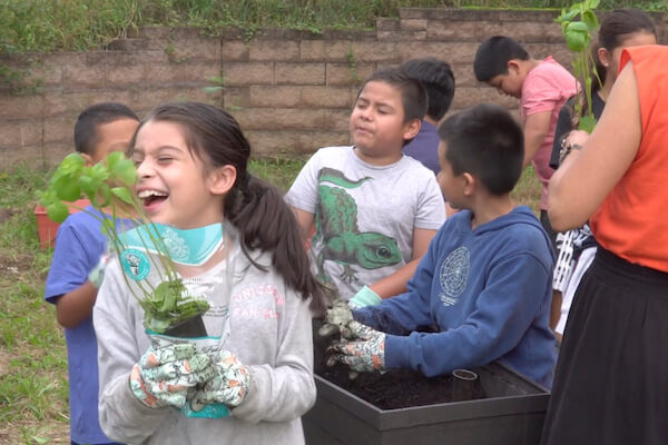 Photo of children involved with a non-profit smiling and working with plants in a garden,